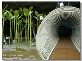 20120728台南-台灣歷史博物館:20DSC09756.jpg