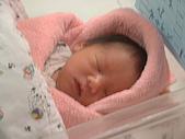 小牛牛ㄟ相簿:20050407(出生第二天)