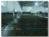 20120817台中新社-百菇莊:DSC04565.jpg