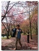 20120225台中武陵農場賞櫻行:DSC00687.jpg