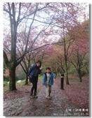 20120225台中武陵農場賞櫻行:DSC00698.jpg