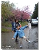 20120225台中武陵農場賞櫻行:DSC00782.jpg