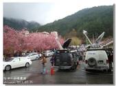 20120225台中武陵農場賞櫻行:DSC00785.jpg