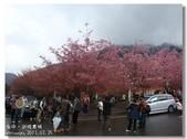 20120225台中武陵農場賞櫻行:DSC00786.jpg