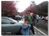 20120225台中武陵農場賞櫻行:DSC00870.jpg
