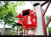 香草:DSC_1402.jpg