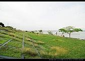 20100505-雙園大橋:DSC_1293.jpg