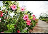 20100505-雙園大橋:DSC_1331.jpg