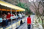 九族and劍湖山:DSC_0944.JPG