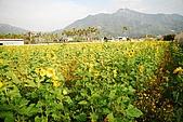 九族and劍湖山:DSC_1046.JPG