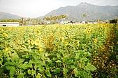 九族and劍湖山:DSC_1047.JPG