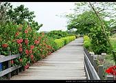 20100505-雙園大橋:DSC_1320.jpg