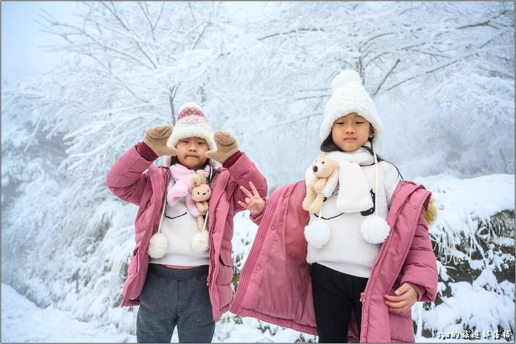 真的有種出國賞雪的錯覺