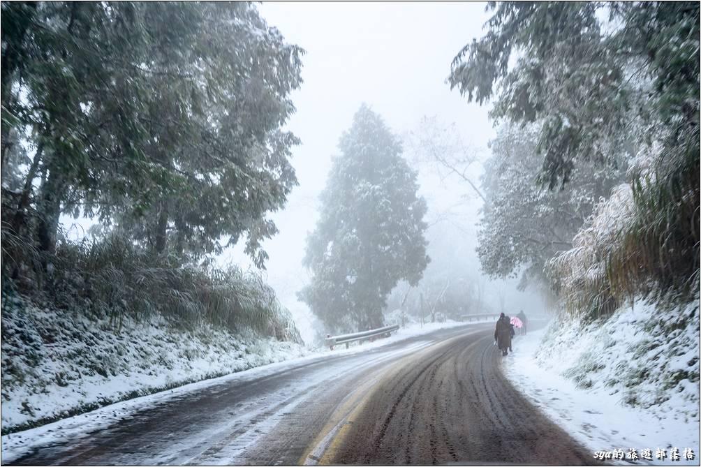 過了管制站才發現,剛才看到一寫雪照片拍得那麼起勁,沒想到山上這個才是雪景阿~