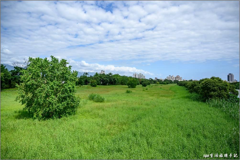 慶和橋津梅棧道下的大草原