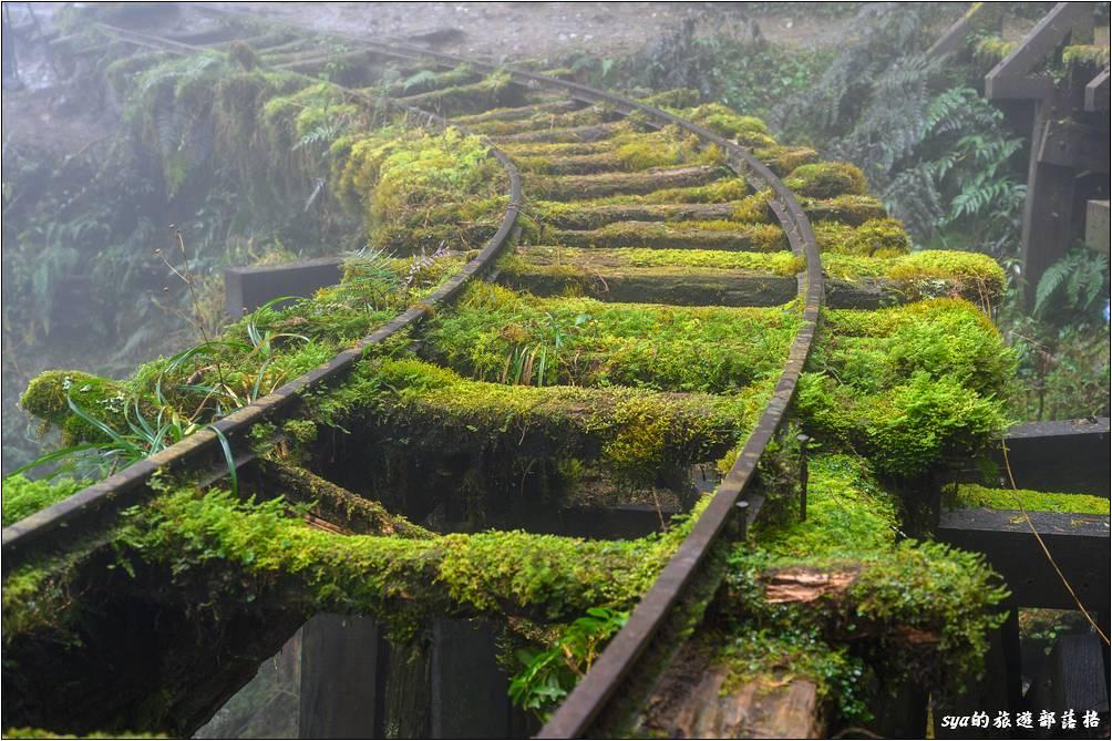 舊運材軌道