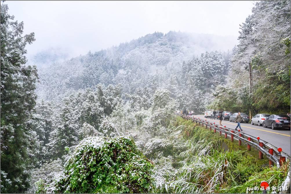 隨著道路慢慢的爬升,路旁慢慢有了白雪的影子,車上更是一陣驚呼!