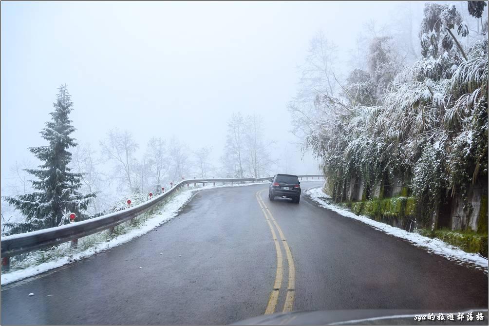 通過管制點後,不再像是剛剛綠色植物上妝點的白色雪花了,而漸漸開始是一整片的白濛濛雪國夢幻畫面!