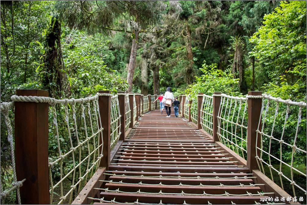 森林探索區