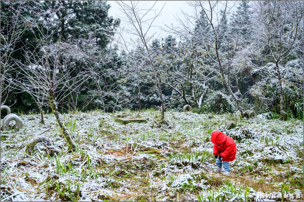 雖然不是第一次看到雪,但第一次在台灣看到就是格外的興奮。