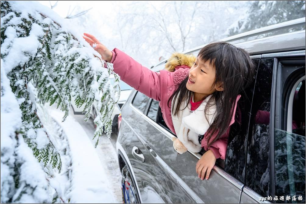 途中我們剛好停在一個伸手就能摸到冰的樹旁,兩個小丫頭很開心的馬上搖下車窗,第一次觸摸樹上鬆軟的雪花。
