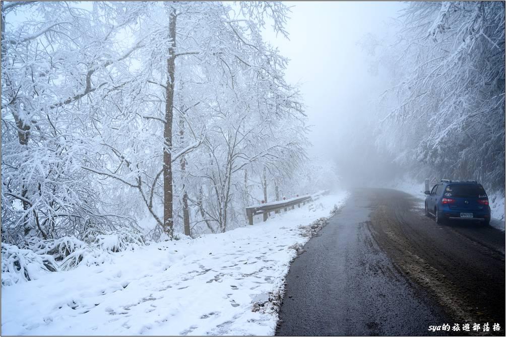 因為一早入園時,對向的路面除了一早走過的產雪車走過外,沒有什麼車潮,因此路面邊上的白雪會保持的較好。