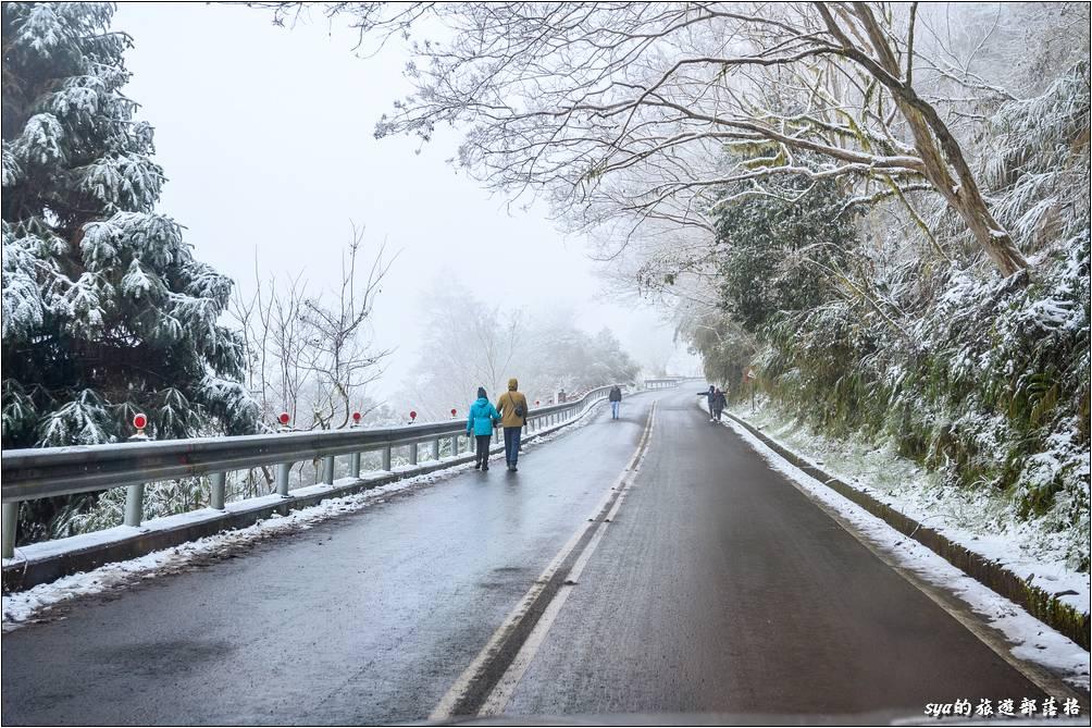 車輛如果沒有安裝雪鏈,也是可以徒步而上賞雪,但如果開始氣候變比較糟想要回程時,你的回程就會走得很辛苦囉!