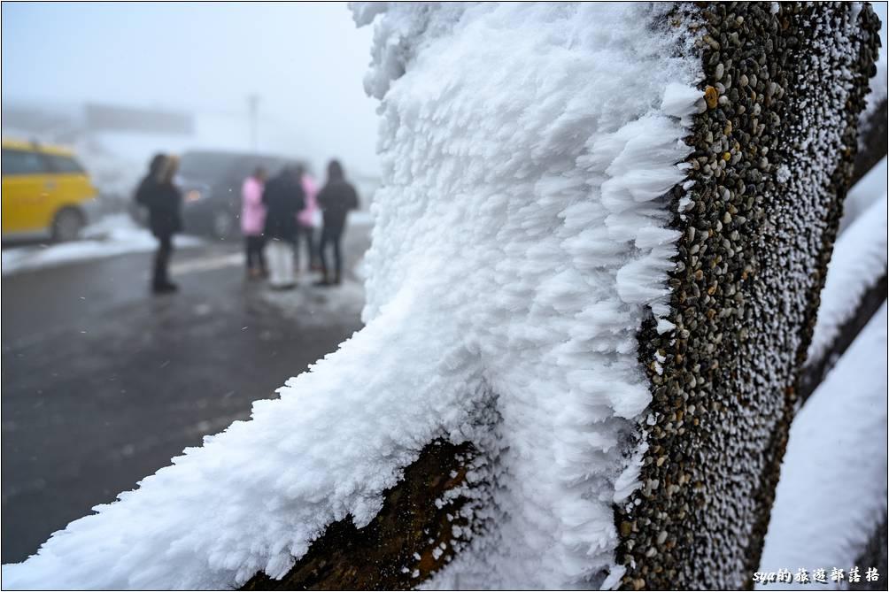 太平山莊這幾晚不知道是不是風也很大,這裡的冰都結冰成這種形狀,很像怪獸的皮膚!
