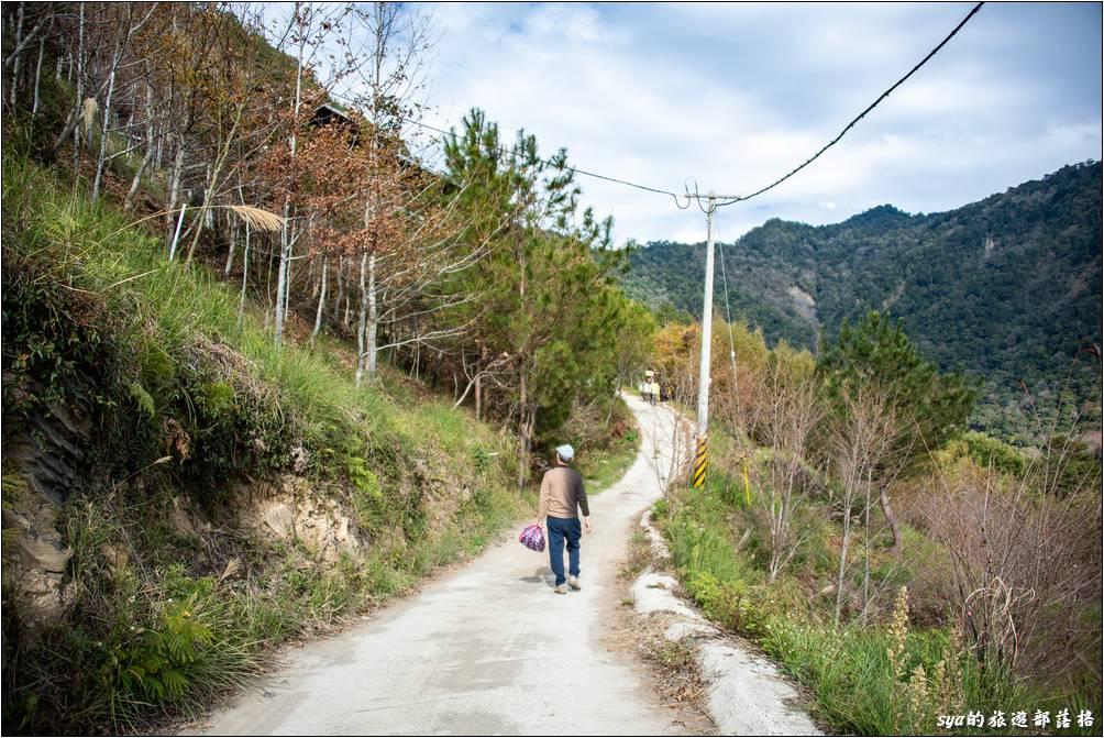 在部落附近的小徑四通八達,很多條都可以通往司立富瀑布或是神木群步道的入口,跟著部落的指示牌,或是開著手機跟著Google Map走基本上就OK了。