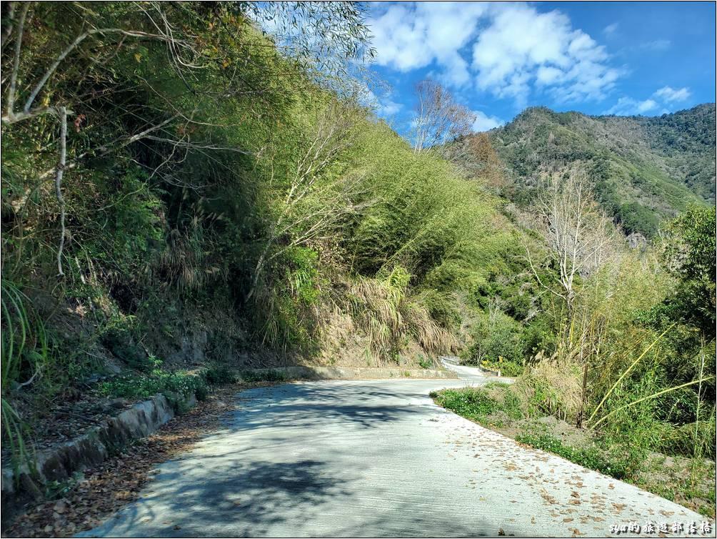 司馬庫斯產業道路從泰崗路口到司馬庫斯部落約16公里。除了前1~2公里還是坑坑洞洞的柏油道路之外,其他的部分都以改為水泥鋪裝道路。路感沒有柏油路那麼舒適,但比較耐用,不向柏油路容易產生大坑洞。