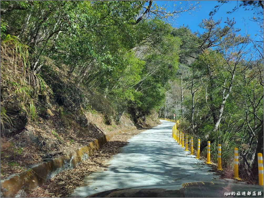 司馬庫斯產業道路路幅不寬,大部分都只有一台車的寬度,部分路段還是在懸崖邊。因此一定要注意單向通車的管制時間。