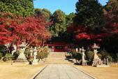 秋之戀(11) 由洛西到洛北:1180.jpg 大原野神社