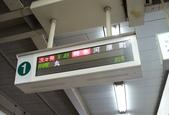 日本櫻花(14) 哲學之道與蹴上鐵道:0843.jpg