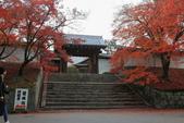 2010日本關西(3)京都東郊楓葉盟:0291.jpg  京都 曼殊院
