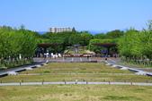 北國之春(8) 春日花海:0641.jpg 昭和記念公園