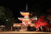 秋之戀(14) 京都秋夜:1155.jpg 京都大覚寺