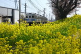 春日鐵道(6) 海角天涯:0772.JPG 大麻生駅