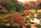 秋之戀(三) 庭園、森林、往事如昨:0140.jpg 六義園