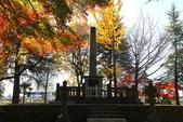 秋(2) 在水一方:0155.JPG  西那須野.大山参道