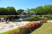 北國之春(8) 春日花海:0653.jpg 昭和記念公園