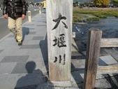 2010日本關西(5)嵐山與桃山:0477.jpg 京都 嵐山