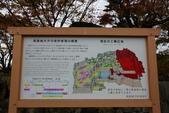 2010日本關西(1)兵庫三城:姬路、明石、神戶:0075.jpg 姬( 姫 ) 路城 , Himeji Castle