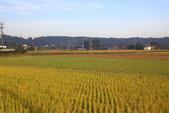 秋(3) 天長地久:0326.JPG  小湊鉄道