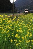 花見(2) 燃燒一瞬間:0134.JPG 平成筑豊鉄道
