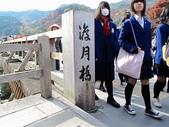 2010日本關西(5)嵐山與桃山:0479.jpg 京都 嵐山