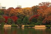 秋之戀(三) 庭園、森林、往事如昨:0146.jpg 六義園