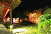 秋之戀(14) 京都秋夜:1006.jpg 京都隨心院
