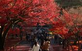 旅 遊 精 選:0792.JPG (2014-11-30 京都南禅寺)
