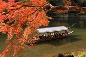 2010日本關西(5)嵐山與桃山:0498.jpg 京都 嵐山