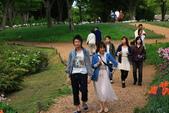 北國之春(1) 戀人協奏曲:0743.jpg 昭和記念公園